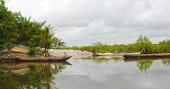 Afrykański krajobraz Gambii
